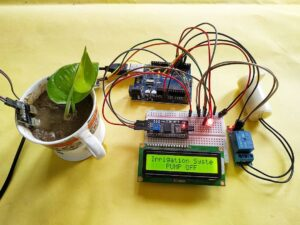 How to automatic plant watering system